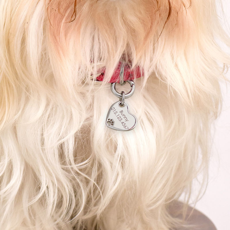 Custom Engraved Pet Id Tag Leather Collar for Dogs and Cats Heart Shaped in Small - 2