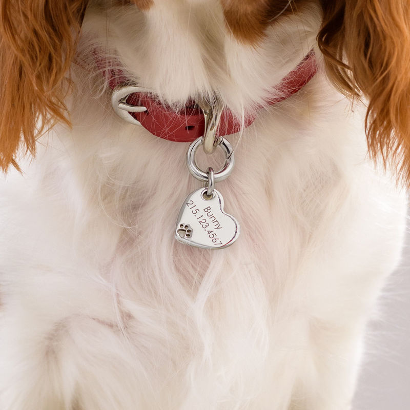 Custom Engraved Pet Id Tag Leather Collar for Dogs and Cats Heart Shaped in Large - 2