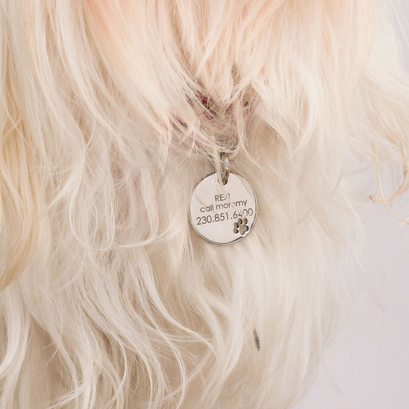 Engraved Cat or Dog Name Tag Round Shaped - 3