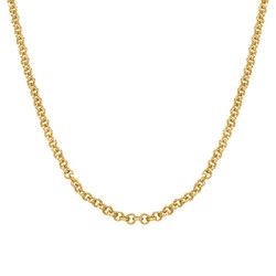 Rollo Chain - Gold Plated product photo