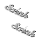 Sparkling Sterling Silver Personalized Name  Earrings