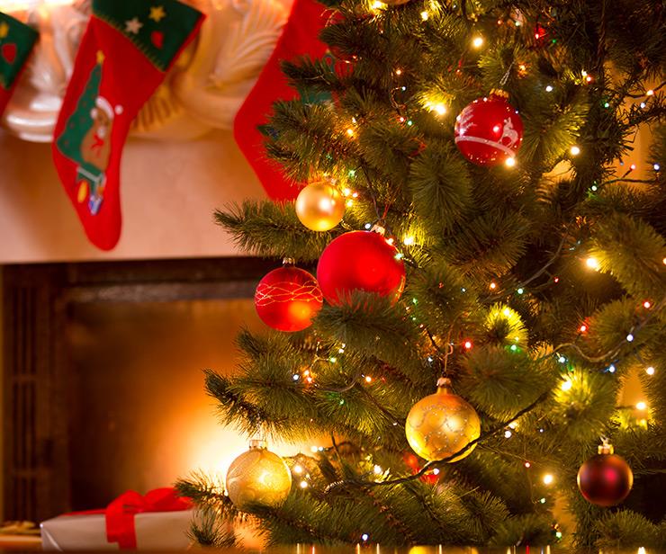 Revolusjoner din julepynt