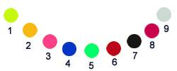 Vinyl Crush Colors