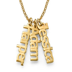 Vertical Name Necklace in 18ct Gold Plating product photo